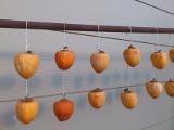 軒下の干し柿
