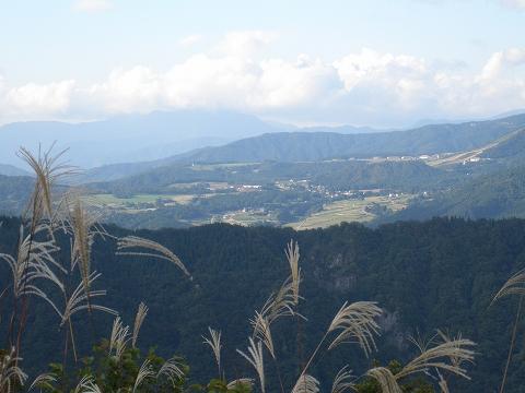 arashima 083