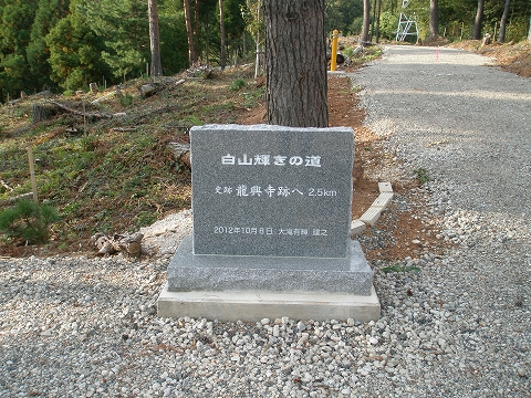 ryuukoujizaka 081