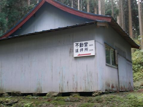 yoshitani 003