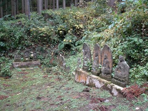 yoshitani 018