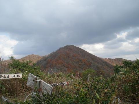 yoshitani2 048