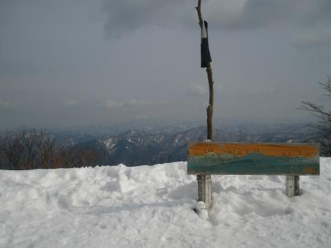 P1130029.jpg
