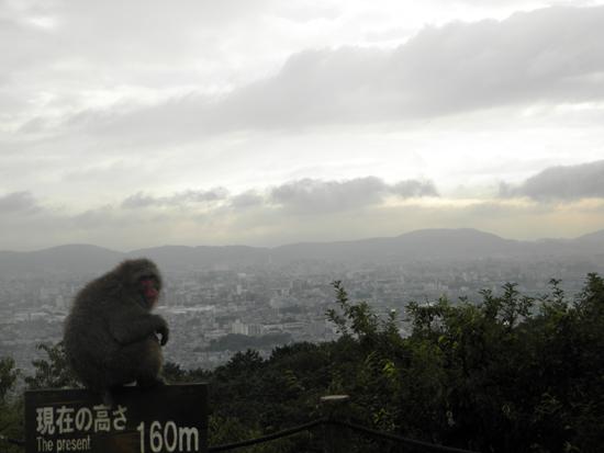 2012 1004 霧