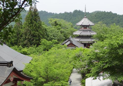奈良タイトル画像