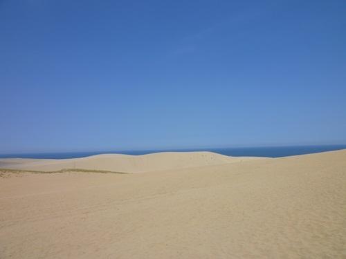 鳥取砂丘じゃ~