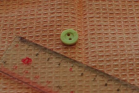 マヨの胃の中から出てきたボタン