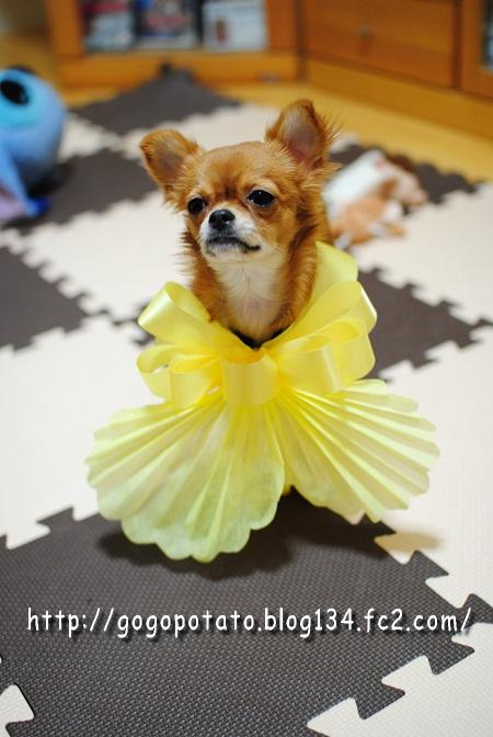 黄色いリボン☆マヨ