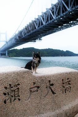 瀬戸大橋とポテト