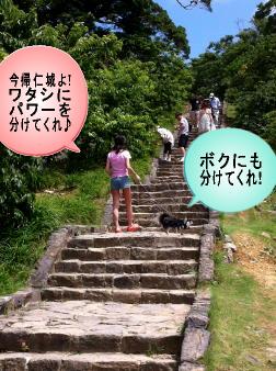 階段を昇ると