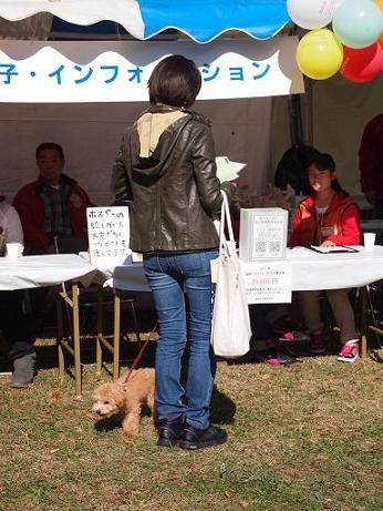 2012_11_5_4.jpg