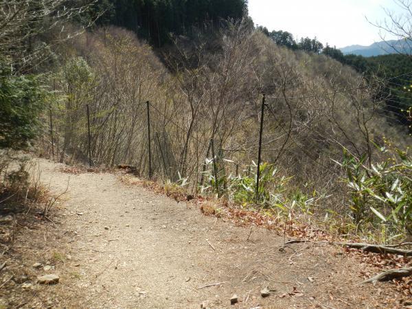 高水三山 116