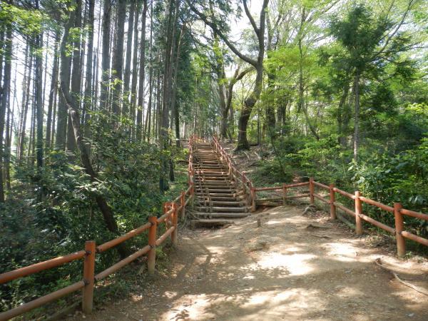 高尾山 038