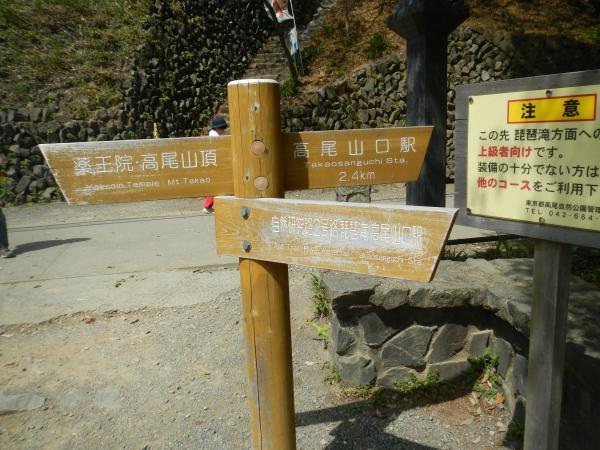 高尾山 117