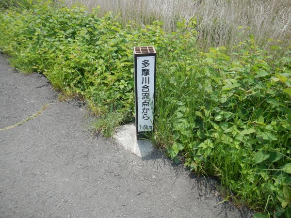 秋川 034