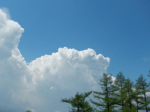 雲取山 043