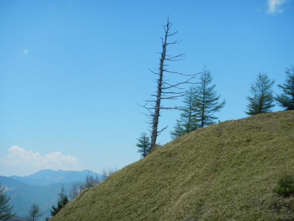 雲取山 059