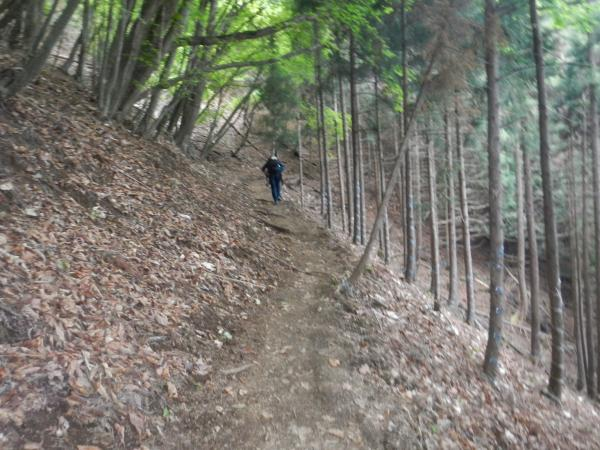 雲取山 091
