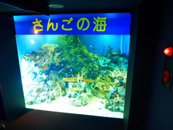 水族館18