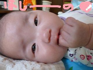 2012_0608ピクチャ0063hina