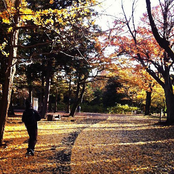 tomoya_photo.jpg