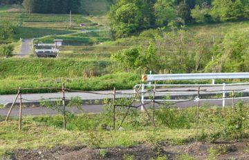 牧場の囲い風 柵