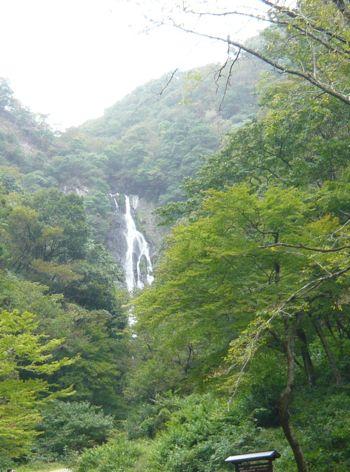 真庭の滝 雨