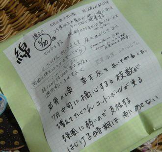 綿 レシピ