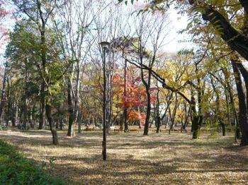 井の頭公園6