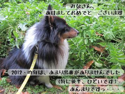 130101_02.jpg