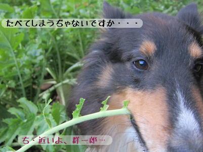 130101_05_1.jpg