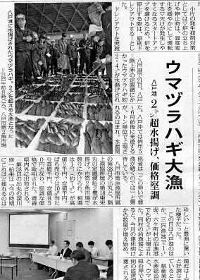 デーリー東北新聞 ウマヅラハギ大漁の記事