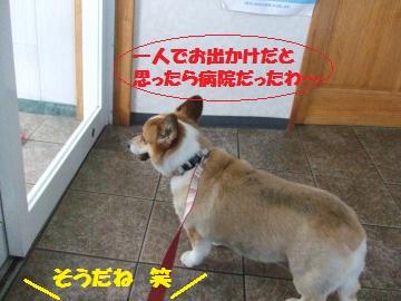 001_convert_20120814022323.jpg