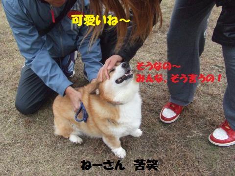 003_convert_20121206232549.jpg