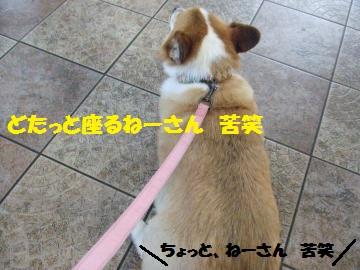 004_convert_20120902235620.jpg