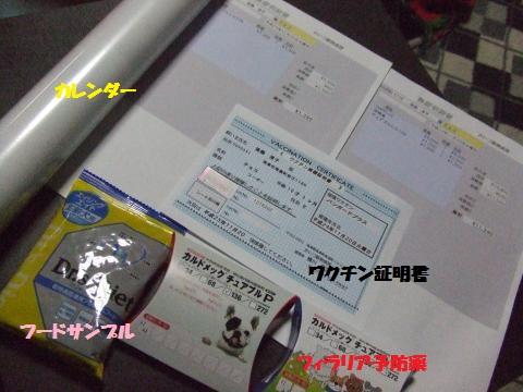 004_convert_20121122032746.jpg