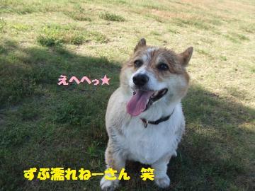 005_convert_20120807235705.jpg