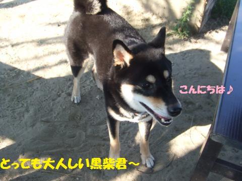 006_convert_20121011234434.jpg