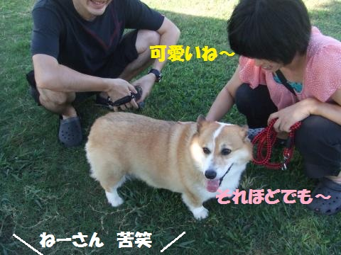 010_convert_20120924010138.jpg