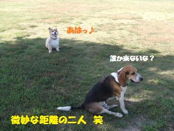 014_convert_20120808000240.jpg