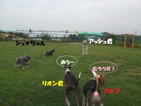 014_convert_20121008030400.jpg