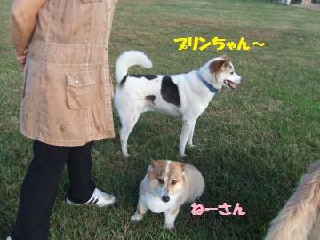 016_convert_20120808000139.jpg