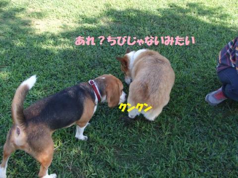 016_convert_20120924010421.jpg