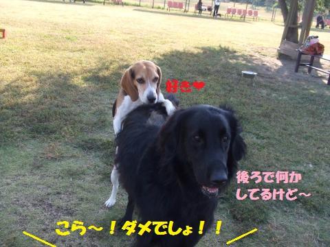 017_convert_20121025233048.jpg