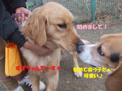 017_convert_20121206233515.jpg