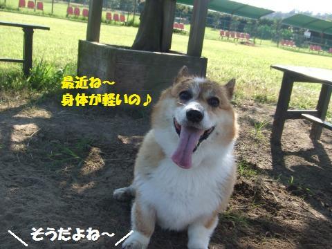 018_convert_20120918015251.jpg