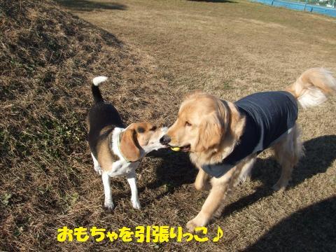 022_convert_20121229021745.jpg