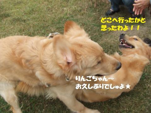 026_convert_20121023001313.jpg