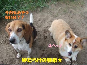 029_convert_20120910215627.jpg