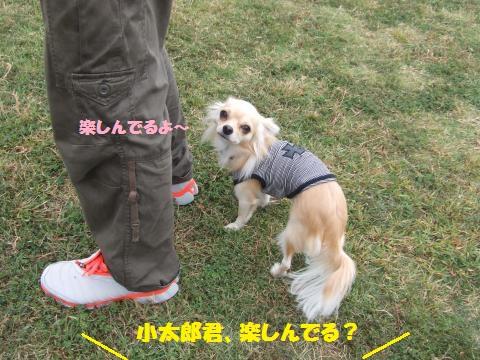 031_convert_20121023002838.jpg